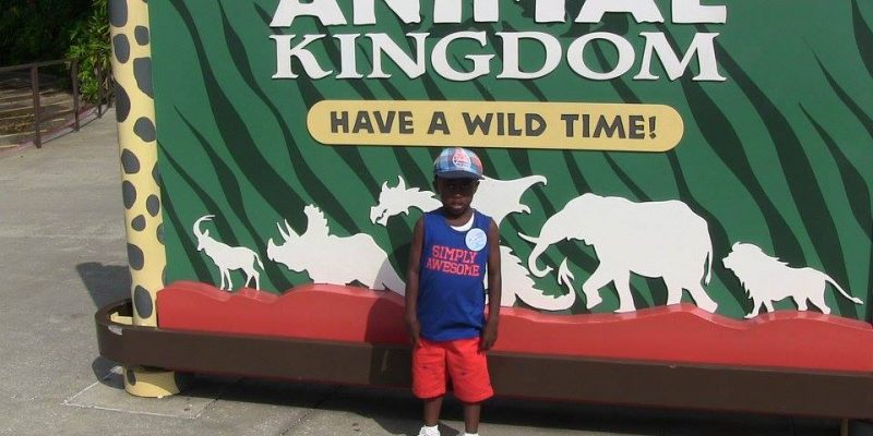 I Wish To Go To Disney World - Ajani Grazette